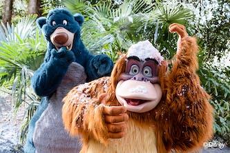 Disneybär Balu und der Orang Utan König Lui aus dem Disneyklassiker das Dschungelbuch mit Dschungellandschaft und Pamen im Hintergrund sowie ein wenig künstlicher Schnee