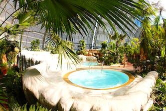 Whirlpool im Tropical Island mit Palmen um Vordergrund und Hintergrund - den Whirlpool umschließt eine Sitzmöglichkeit die wie echter weißer Sandstein aussieht. Man könnte tatsächlich denken, dass man sich in der Karibik oder in der Südsee befindet - aber man ist in Deutschland